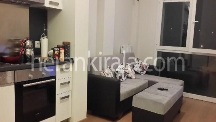 Halkalı'da günlük haftalık kiralık daireler 1+1
